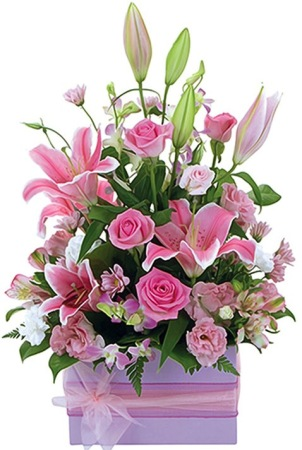 Pink Boxed Arrangement